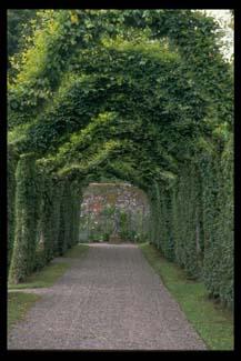 birr castle demesne birr review georgina campbell guides