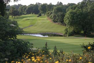 Forest Little Golf Club - Swords County Dublin Ireland