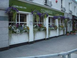 O'Connells in Donnybrook - Summer of 2011DSCN2018_(640_x_480)_(320_x_240).jpg