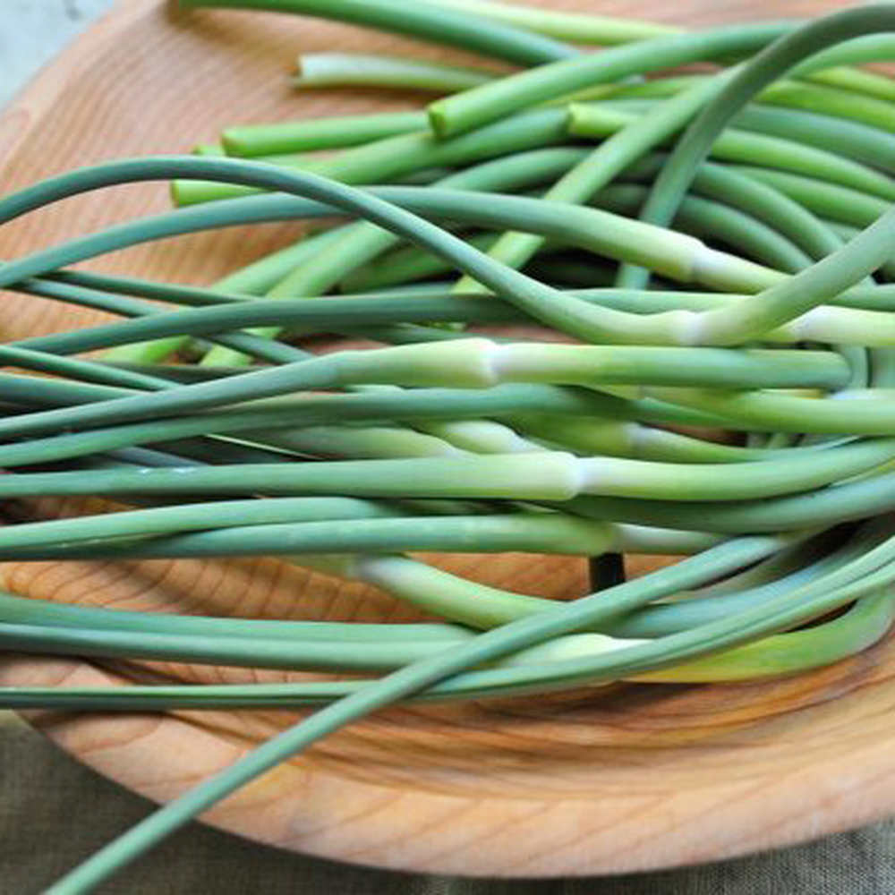 Drummod House Garlic Scapes