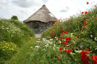 Brigit's Garden & Cafe | Oughterard Review Georgina ...
