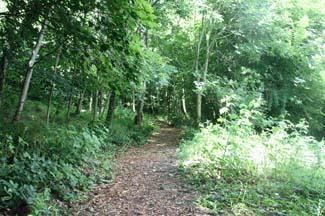 Castlecomer Discovery Park - Castlecomer County Kilkenny Ireland