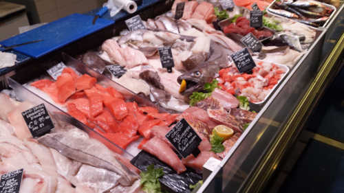 Cavistons Fish Counter