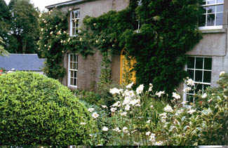 The Cottage Garden - The Bay Garden, Camolin, Enniscorthy County Wexford