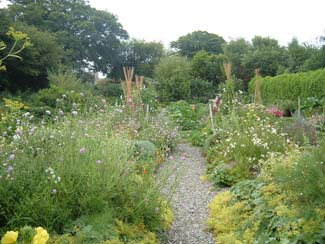 Glebe gardens - Cork