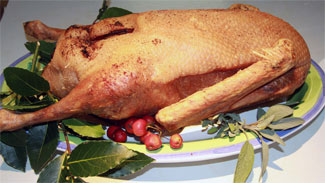 Traditional Roast Goose with Potato Stuffing and Roast Bramley Apples