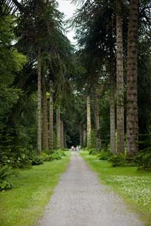 Woodstock Gardens Inistioge Review Georgina Campbell Guides