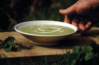 Nettle & Potato Soup