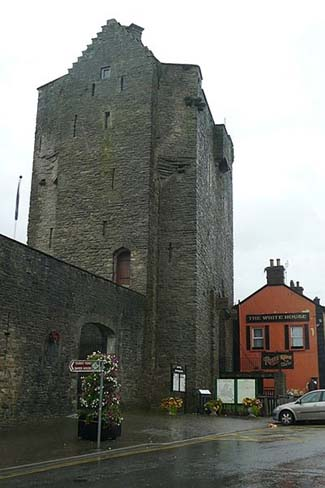 Roscrea Castle & Heritage Centre - Roscrea County Tipperary Ireland
