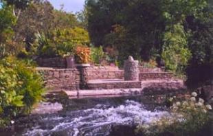West Cork Garden Trail - Carraig Abhainn