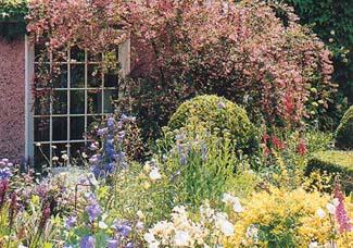 Carysfort Lodge Garden