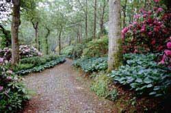 Mount Congreve - Garden County Waterford ireland