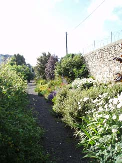 Burton Hall Garden - Border