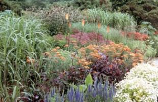 Wicklow Garden Festival - Hunting Brook Garden