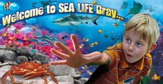 National Sea Life Centre - Bray County Wicklow Ireland
