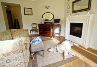 Pet Friendly Bedroom Rathmullan House.jpg