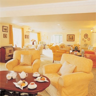 BrookLodge Hotel - Macreddin County Wicklow Ireland - lounge