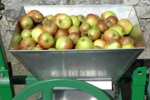 Lough Bishop House - Collinstown County Westmeath ireland - apples