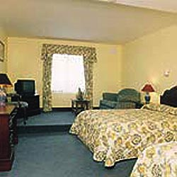 Fitzgeralds Woodlands House Hotel  - Twin bedroom