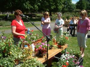 Tralee Garden Show - Tralee County Kerry Ireland