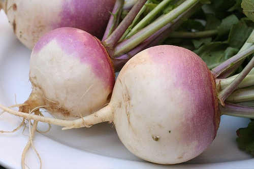 Root Vegetables are In Season in Winter | Georgina ...