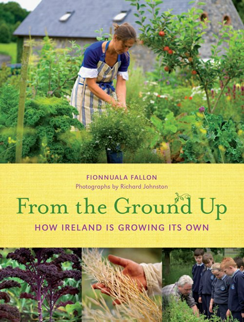 From The Ground Up by Fionnuala Fallon
