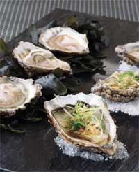 Oysters Sashimi Style