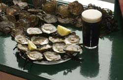 Native Oysters and Pint