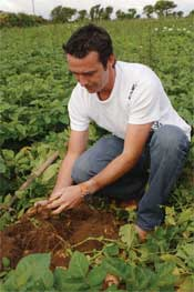 Chef Kevin Dundon digging potatoes
