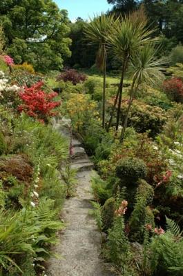 Lisselan Gardens - Clonakilty County Cork