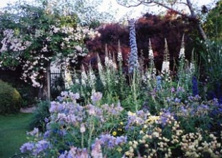 Rathmichael Lodge Garden - Shankill County Dublin