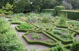 Ballymaloe Cookery School Gardens - Herb Garden