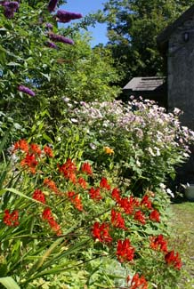 Caher Bridge Garden - Fanore County Clare Ireland