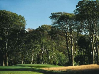 The 4th Fairway