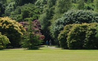 John F Kennedy Arboretum - New Ross County Wexford Ireland