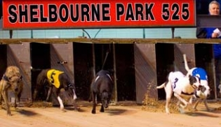 Shelbourne Park Greyhound Stadium - Dublin 4