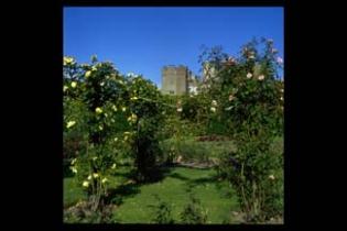 Ardgillan Castle Gardens - Balbriggan County Dublin IReland