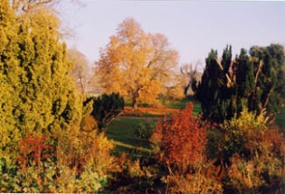 Knockabbey Castle and Gardens - Autumn