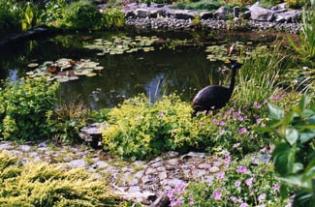 Aultaghreagh Cottage Garden