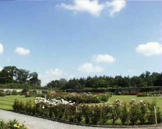 Fota Arboretum & Gardens - Fota Island County Cork Ireland