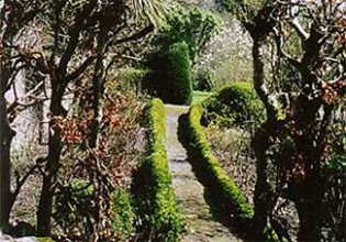 Knockmore Garden - Enniskerry County Wicklow Ireland