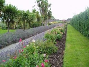 Burton Hall Garden - Border