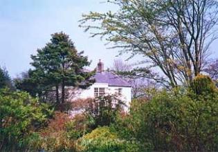 Primrose Hill Garden - Lucan County Dublin ireland