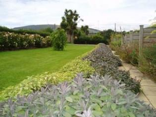 Burton Hall Garden - Sage Border