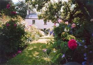 Warble Bank - Garden Newtownmountkennedy County Wicklow Ireland